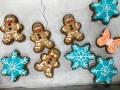 IMG_3835funny gingerbreadmenCN